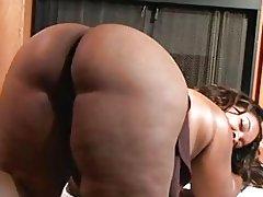 Black BBW Amber Swallows