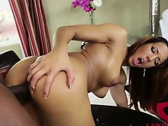 Gorgeous African American slut fucked